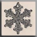 12039 - Large Snowflake Crystal Bright 20mm - 1 per pkg